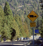 Mt. Rose Highway to Reno