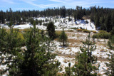 Early October snow at 8,900 feet