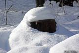 Winter scenes, Inskip, Calif. December 23, 2010
