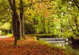 Canal Walk, Kilkenny City.jpg