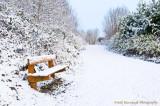 Snowy Bench.jpg