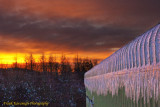 A Sky Of Fire & Roof Of Ice.jpg