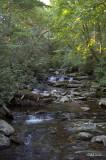 Chimney Tops Trail 3