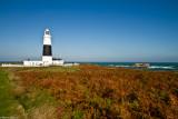 Alderney