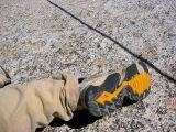 Special_Treadless_Climbing_Shoes.jpg