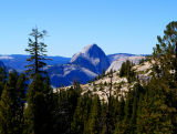 Olmsted_Point_Half_Dome.jpg