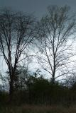 typical spring storm
