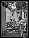 A Tribute to Jim Morrison