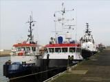 FLAT HOLM - SEA GOLF - STEVNS ARCTIC