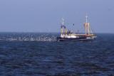 vissersboot / fishing boat 20061017021