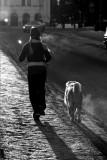 Doglife 1.jpg