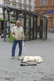 Doglife 14.jpg