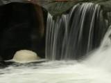 Foam, Quinsam Falls.jpg