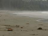 Walkers, beach mist.jpg