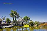 DSC_4589- The Water Garden
