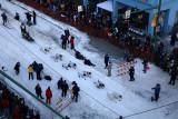 Iditarod37_Anc_07Mar2009_ 012.JPG