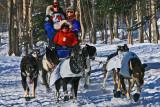Iditarod37_Anc_07Mar2009_ 061.JPG