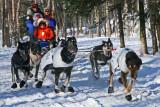 Iditarod37_Anc_07Mar2009_ 063.JPG