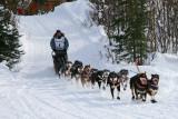 Iditarod37_Willow_08Mar2009_ 035_Swenson.JPG