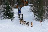 Iditarod37_Willow_08Mar2009_ 043_Matray.JPG