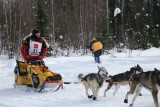 Iditarod37_Willow_08Mar2009_ 075.JPG