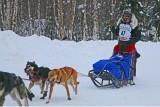 Iditarod37_Willow_08Mar2009_ 157_Lance.JPG