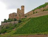 Rhine Valley4 pc.jpg