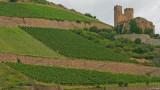Rhine Valley5 pc.jpg