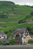 Rhine Valley7 pc.jpg