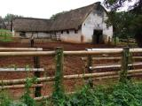 Mabuda Farm 06.jpg