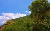 Sardine Canyon