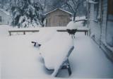 Okarche, OK - March 8-9, 1994 (12.3 inches)