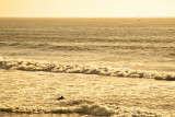 Surfer in Ocean Beach at Dusk