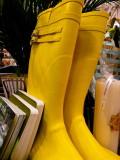 Yellow - Buí 3 : Yellow wellies