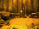 Eerie nightlight in the snowgarden