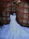 The Grinning Snowcat
