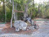 Wild Boar Cave site