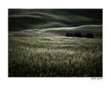 valley in Toscane