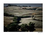 farm near Volterra