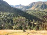 Vall de Sorteny