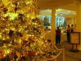 Sheraton Moana Surfrider Christmas tree