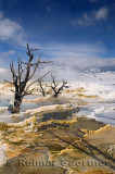 193 Mammoth Hot Springs 4.jpg