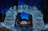 195 Jackson night antlers 2.jpg