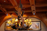 196 Moose Antler chandelier.jpg