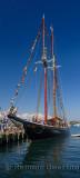 Bluenose II at Halifax Harbour Tall Ships Festival 2009 Nova Scotia