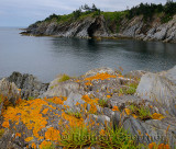 Cave and orange lichen on sea cliffs at Smugglers Cove Provincial Park Nova Scotia