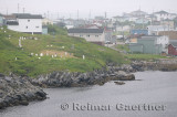 Cemetery and houses on the waterfront shores of Port aux Basques Newfoundland harbour
