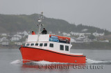 Tour boat operator leaving Twillingate harbour in early morning fog Newfoundland