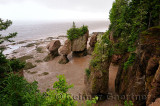 Flower Pot sea stacks at low tide at Hopewell Rocks Bay of Fundy New Brunswick