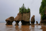 Lovers Arch and Bear Rock sea stacks with incoming tide at Hopewell Rocks Bay of Fundy